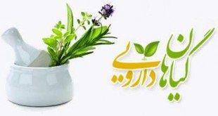 کارگاه آموزشی طراحی کسب و کار در گیاهان دارویی