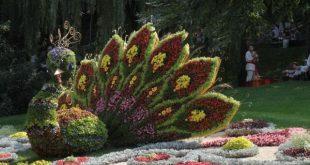 نمایشگاه گل و گیاه تهران 95