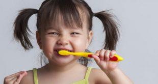 شناسنامه الکترونیکی دهان و دندان دانش آموزان