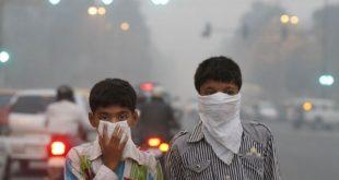 مواد غذایی مفید برای آلودگی هوای تهران
